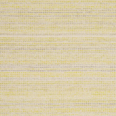 Clarke and Clarke COBA F0799 CITRUS Clarke and Clarke Fabrics