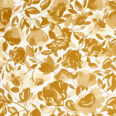 Clarke and Clarke CAITLIN VELVET F0818 GOLD Clarke and Clarke Fabrics