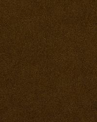 Robert Allen Soothing Cinnamon Fabric