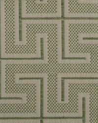 Duralee 1157 51 GRASS ROOTS Fabric