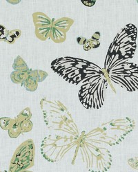 Duralee LE42547 699 OLIVE GOLD Fabric