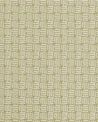 Duralee 71113 579 Peridot Fabric