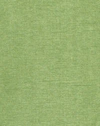 DQ61335 212 APPLE GREEN by
