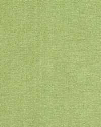 DQ61335 683 PALM GREEN by