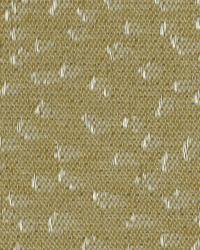 Robert Allen Hail Stones Squash Fabric
