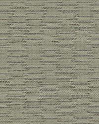 Robert Allen Barrateen Pebble Fabric