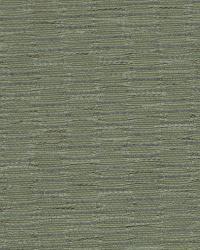 Robert Allen Barrateen Willow Fabric