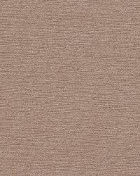 Robert Allen Zany Lanes Birch Fabric