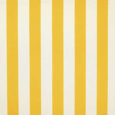 Ralph Lauren PRINGLE STRIPE       PINEAPPLE            Search Results