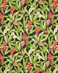 Ralph Lauren Missouri Floral Midnight Fabric