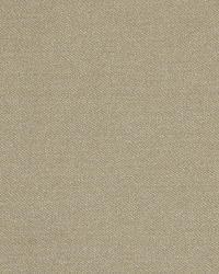 Robert Allen Mordini Sand Dollar Fabric