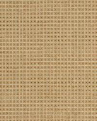 Robert Allen Over Stitch Champagne Fabric