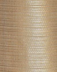 Robert Allen Atterwan Biscuit Fabric