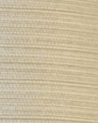 Robert Allen Atterwan Champagne Fabric