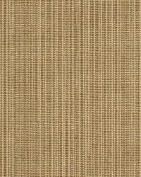 Robert Allen Long Line Biscuit Fabric