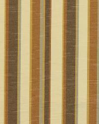 Robert Allen Mattison Amber Fabric
