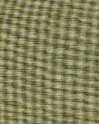 Robert Allen Plain Elegance Apple Ii Fabric