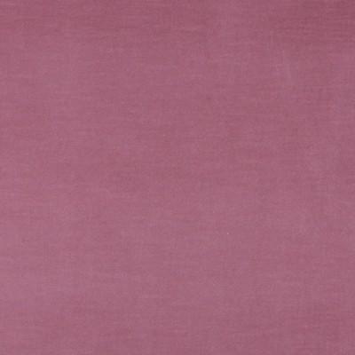 Charlotte Fabrics 10001-02  Search Results