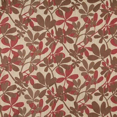 Charlotte Fabrics 10030-02  Search Results