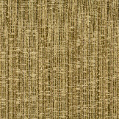 Charlotte Fabrics 1051 Meadow Search Results