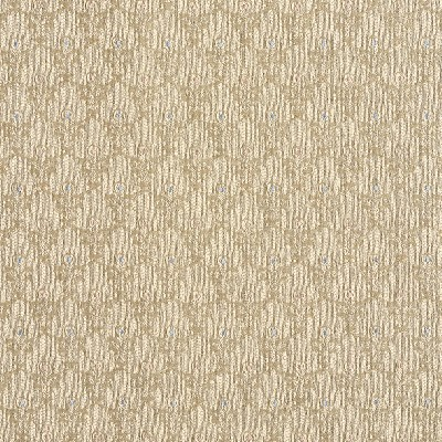 Charlotte Fabrics 1436 Khaki Search Results
