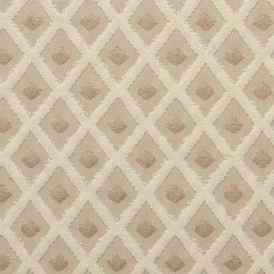 Charlotte Fabrics 20770-04  Search Results