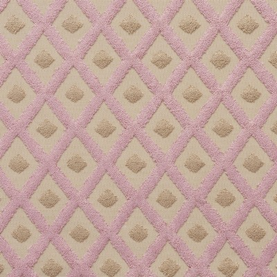 Charlotte Fabrics 20770-08  Search Results