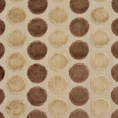 Charlotte Fabrics 20780-01  Search Results