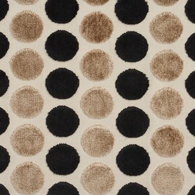 Charlotte Fabrics 20780-05  Search Results
