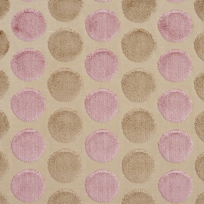Charlotte Fabrics 20780-08  Search Results