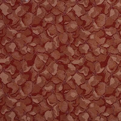 Charlotte Fabrics 2795 Sienna  Sienna  Charlotte Fabrics