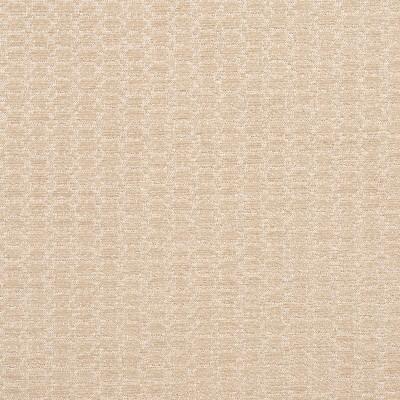Charlotte Fabrics 3472 Opal Search Results