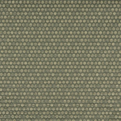 Charlotte Fabrics 3573 Ivy Search Results