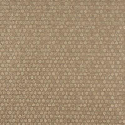 Charlotte Fabrics 3576 Buff Charlotte Fabrics