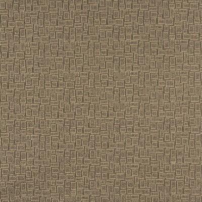 Charlotte Fabrics 3592 Khaki Search Results