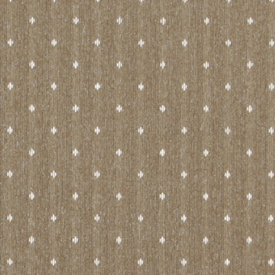 Charlotte Fabrics 3619 Toast Dot Search Results