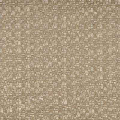 Charlotte Fabrics 3751 Shell Decorative Durables XII