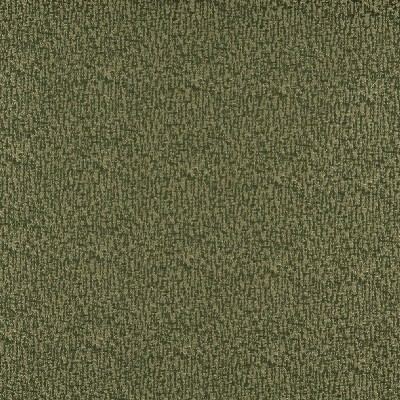 Charlotte Fabrics 3765 Avocado Search Results