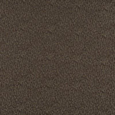 Charlotte Fabrics 3766 Walnut Search Results