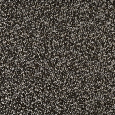 Charlotte Fabrics 3767 Charcoal Search Results