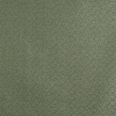 Charlotte Fabrics 3773 Pear Search Results