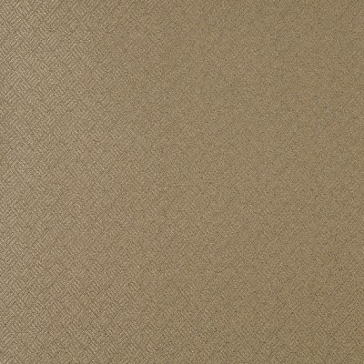 Charlotte Fabrics 3774 Sand Search Results