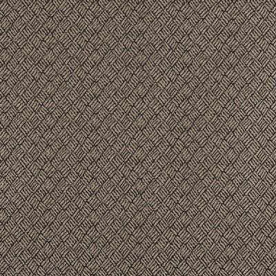 Charlotte Fabrics 3779 Bamboo Search Results