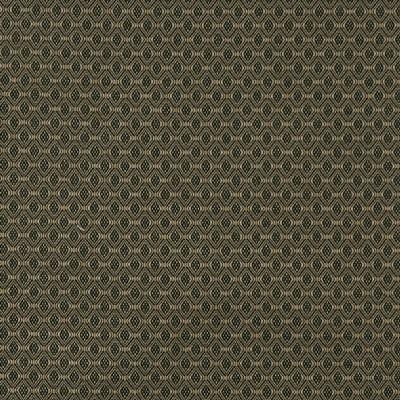 Charlotte Fabrics 3818 Pine Search Results