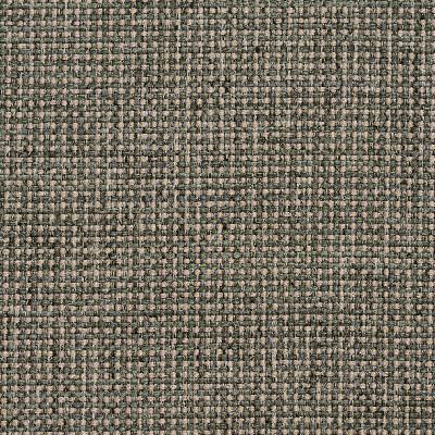 Charlotte Fabrics 4005 Aloe Charlotte Fabrics