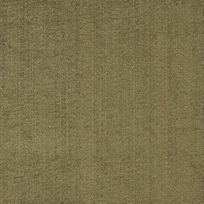 Charlotte Fabrics 5063 Cypress Search Results