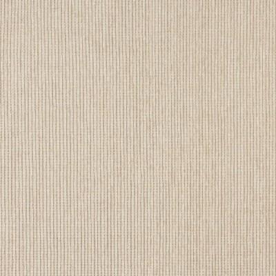 Charlotte Fabrics 5092 Cream Search Results