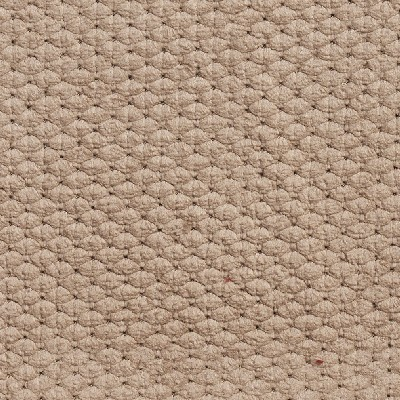Charlotte Fabrics 5140 Camel Search Results