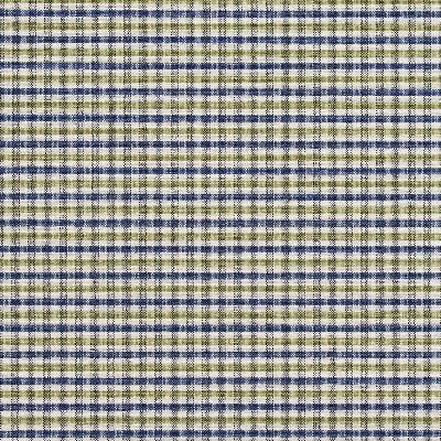 Charlotte Fabrics 5813 Laguna Check Charlotte Fabrics