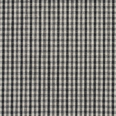 Charlotte Fabrics 5815 Onyx Check Search Results